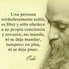Spiritual Quotes, Wisdom Quotes, Book Quotes, Me Quotes, Motivational Quotes, Qoutes, Spanish Inspirational Quotes, Spanish Quotes, Osho