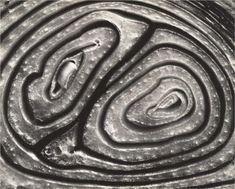 Onion Halved - Edward Weston, 1930