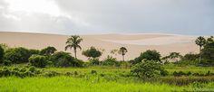 Delta do Parnaiba - Pesquisa Google