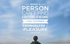 """""""When a person can't find a deep sense of meaning, they distract themselves with pleasure."""" Donald Miller"""