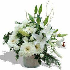 Güzel bir hediyeye ne dersiniz?  Sevdiğinize, annenize, babanıza veya bir arkadaşınıza çiçek hediye etmek istemez misiniz?  Trabzon Çiçekçilik olarak, bu isteklerinize karşılık vermek için yıllardır hizmetinizdeyiz.