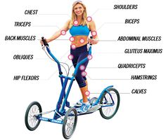 StreetStrider® The Benefits of Elliptical Training & Exercise - Learn More! -could this be the base power unit for a giant tube wheeled kinetic sculpture vehicle? Biceps, Best Exercise Bike, Elliptical Trainer, Elliptical Workouts, Upright Bike, Cardio Equipment, Training Equipment, Workout Machines, Exercise Machine