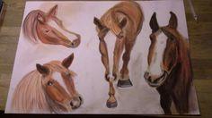 Meine ersten Pferde, Pastellkreide