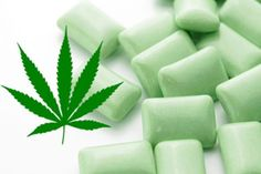 This cannabis chewing gum is another way of treating persistent pain like in the case of fibromyalgia. It contains of each CBD and THC. Fibromyalgia Pain Relief, Fibromyalgia Treatment, Chronic Pain, Chronic Fatigue, Chronic Illness, Fibromyalgia Syndrome, Migraine Relief, Natural Headache Remedies, Medical Marijuana