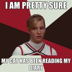 I am pretty sure my cat has been reading my diary