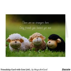 Friendship Card with Cute Little Sheep Friendship Cards, Birthday Greetings, Special Gifts, Sheep, Garden Sculpture, Cute, Friend E Cards, Kawaii, Birthday Wishes