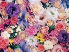 wallpaper hd flower vintage - Buscar con Google