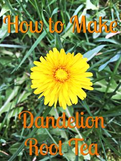 Did you know those pesky dandelions growing in your yard are edible? Yup, and they are actually good for you too.  Dandelion tea is considered a diuretic and a mild laxative. It is believed to help cleanse the liver and gallbladder. It can increase the flow of bile through the liver and biliary tract.  …