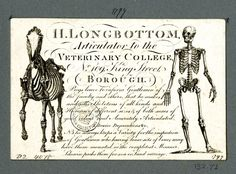 Recto DRAFT Trade card of H Longbottom, skeleton supplier © The Trustees of the British Museum Vintage Labels, Vintage Ephemera, Vintage Paper, Vintage Ads, The Black Cauldron, Human Skeleton, Antique Clocks, Typography Letters, Lettering