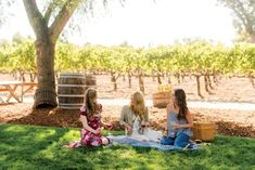 Tri-Valley's Grape Scene. Discover a down-to-earth wine tasting scene and sun you can count on less than an hour from San Francisco.