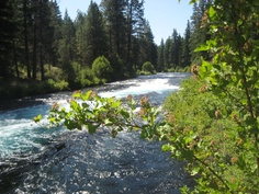 The Metolius River outside of Sisters in Central Oregon