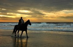 Where to Go Horse Riding in Ireland