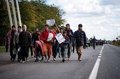 Multitudinaria marcha de migrantes hacia Hungría esperando entrar a la UE - El Pais - Cali Colombia
