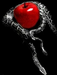 Forbidden fruit. ❣Julianne McPeters❣ no pin limits