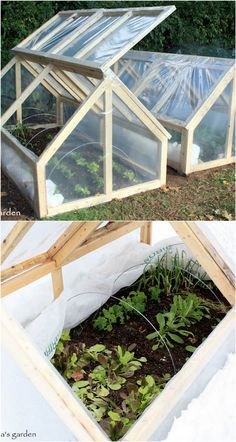 Get inspired ideas for your greenhouse. Build a cold-frame greenhouse. A cold-frame greenhouse is small but effective. Diy Greenhouse Plans, Greenhouse Gardening, Container Gardening, Greenhouse Wedding, Indoor Greenhouse, Diy Small Greenhouse, Underground Greenhouse, Homemade Greenhouse, Cheap Greenhouse