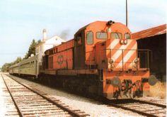163 - Train