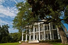 Dunleith Historic Inn: Natchez, Mississippi... would love to stay here and then tour all the other historic homes and plantations in the area. I see a girl's trip in the future!