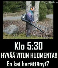 Kiva herätys Finnish Memes, Kai, Funny Relatable Memes, Funny Photos, True Stories, Finland, Make Me Smile, Cool Pictures, Feeling Down