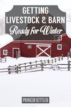 Livestock Preparedness for Winter | 8 Winter Storm Safety Tips To Keep You Prepared  by Pioneer Settler at http://pioneersettler.com/winter-storm-safety-tips/
