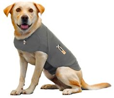 Thundershirt - gift idea #14 of 28 great gifts for dogs!