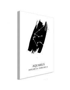 Obraz - Znaki zodiaku: Wodnik (1-częściowy) pionowy Aquarius, Fictional Characters, Art, Goldfish Bowl, Art Background, Aquarium, Kunst, Performing Arts, Fantasy Characters