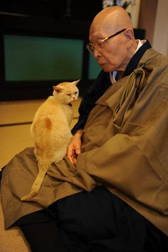 Priest with a cat at Japanese temple in Fukui pref.