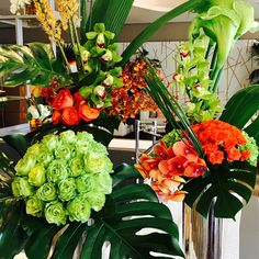 The Emmys, Awards, Plants, Decor, Decoration, Plant, Decorating, Planets, Deco