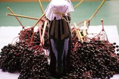 Syrop z owocu czarnego bzu
