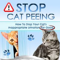 Stop Cats From Peeing Outside The Litter Box! http://stopcatpeeing.com/totb.html?hop=garyjordan