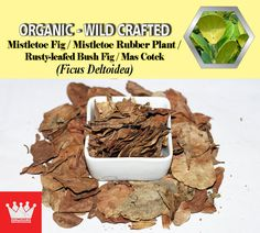 Anti-diebetic, anti-inflammatory, antioxidant, detoxicant, Leucorrhoea, headache, High cholesterol, joint pain, libido loss female, libido loss male, menstrual disorders, migraine, nausea, oligomenorrhea, rheumatism, toothache, ulcers, vaginal dryness. As it promotes contraction of the vagina it is also considered an aphrodisiac. #Driedherbs #Herbalremedies #HerbalMedicine