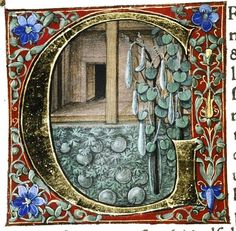 Gherardo di Giovanni - Pliny the Elder's Natural History (Douce Pliny) - Medieval Manuscript, Medieval Art, Illuminated Letters, Illuminated Manuscript, Renaissance, Medieval Paintings, Beautiful Calligraphy, Book Of Hours, Painting & Drawing