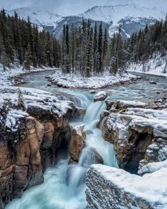 A winter welcoming at Sunwapta Falls, Jasper National Park, Alberta.