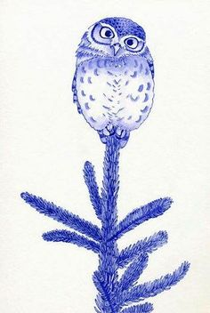 'Little Owl on Tree' by Myrthe Krook