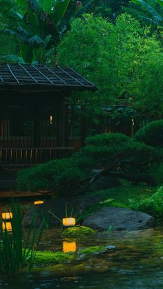 Japanese Garden Design, Night Garden, Bonsai Plants, Cabins In The Woods, Ikebana, Northern Lights, Wallpaper, Places, Travel