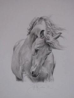 superbe sketch de cheval....superb sketch of a horse...