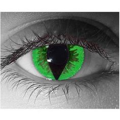 Cat Eye Colored Contacts | Contact Lenses ; Eyeglasses; Common Eye Problems; Eye Diseases; Eye ...