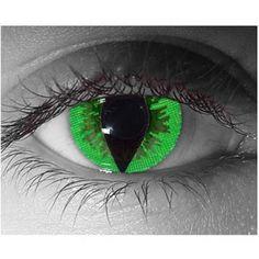 Cat Eye Colored Contacts | Contact Lenses ; Eyeglasses; Common Eye Problems; Eye Diseases; Eye ...