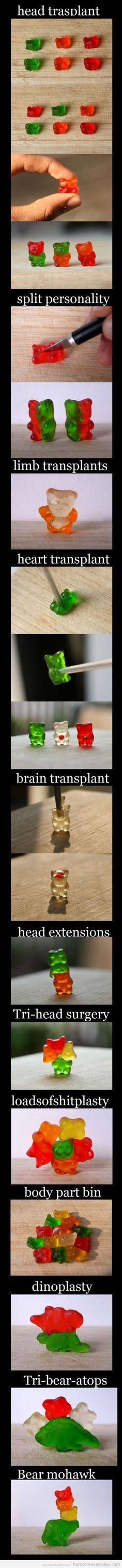 gummy bear transplant.  I now have a new purpose in life