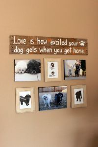 The Dog Corner of - Hunde Animal Room, Excited Dog, Dog Corner, Dog Rooms, Dog Crafts, Dog Houses, My New Room, Fur Babies, Puppies