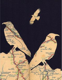 A bit of my own artwork, Llanberis Choughs. On a day like this I wish I was on the Anglesey coast watching out for these unique birds! by carlene Collage Kunst, Map Collage, Paper Collage Art, Collage Art Mixed Media, Grafik Art, Map Crafts, Creation Art, Art Plastique, Map Art