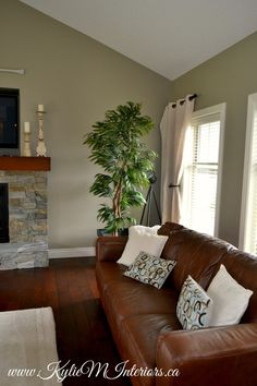 living room benjamin moore gray mirage with slate stone fireplace and dark cherry wood floors and brown leather couch