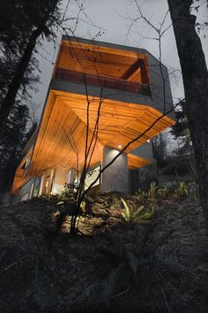The Hoke House By Skylab Architects (Twilight House.)