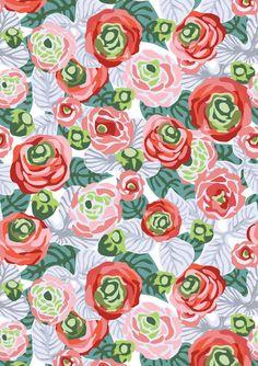 rose garden by frameless