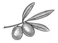 Rhoda Goldman Plaza Logo illustrated by Steven Noble on Behance Eye Illustration, Engraving Illustration, Ink Illustrations, Botanical Illustration, Seal Design, Scratchboard, Sketch Inspiration, Arte Popular, Ink Art