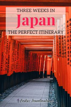 Feb 2020 - Here is your perfect three weeks in Japan itinerary to get you started exploring Japan. Visit the highlig. Budget Travel, Travel Tips, Travel Destinations, Travel Advice, Asia Travel, Japan Travel, Japan On A Budget, Day Trips From Tokyo, Universal Studios Japan