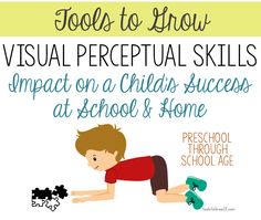 VISUAL PERCEPTION: Possible Impact on a Child's Success at School & Home.
