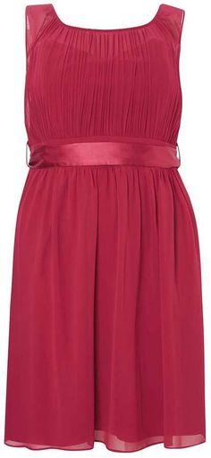 **Showcase Curve Berry Beth Skater Dress