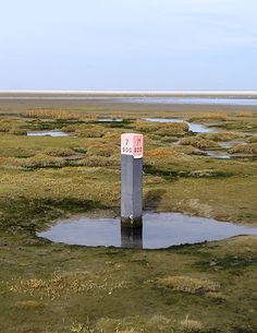 Ameland, Paal 7