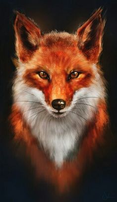 Red Fox or Firefox? by ~sven-werren on deviantART – Red Fox or Firefox? by ~sven-werren on deviantART – Red Fox or Firefox? by ~sven-werren on deviantART – Cute Animal Drawings, Cute Drawings, Drawing Animals, Cute Fox Drawing, Drawing Art, Art Fox, Animals Beautiful, Cute Animals, Wild Animals