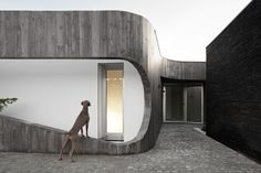 Xieira House II, photo by Fernando Guerra